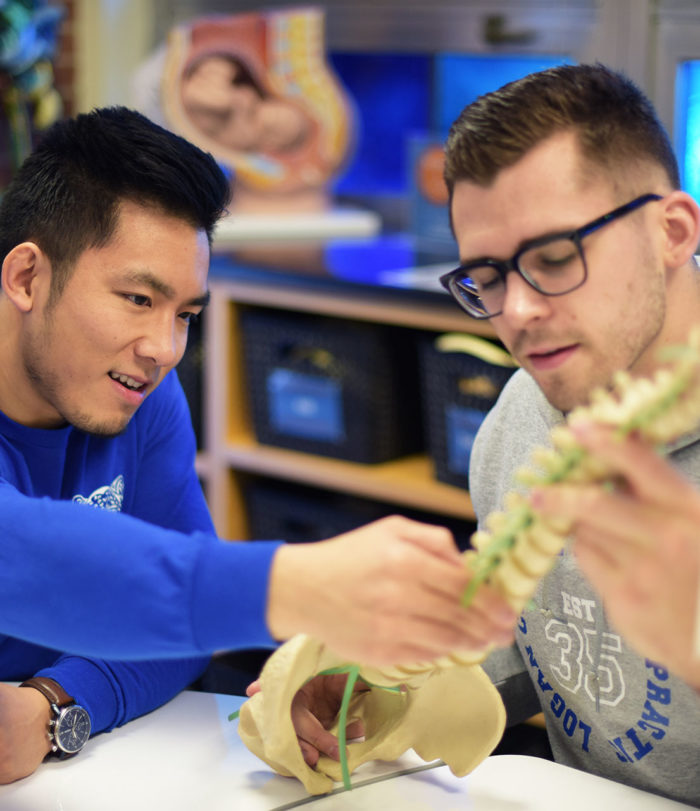 Two students studying anatomy.