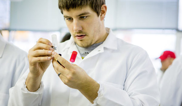 Male student working in science lab.