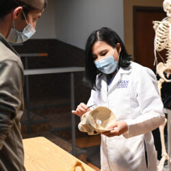 Dr. Yuan Gao shows a skull to a student in Logan University's anatomy lab